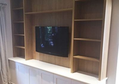 Media Unit with TV